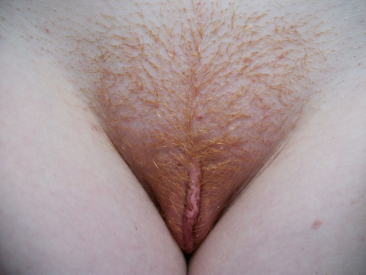 Фото мохнатых рыжих писек, Фото волосатых рыжих писек девушек частное порно 1 фотография
